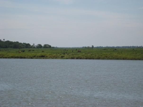 Kalni River - Derai, Sunamganj